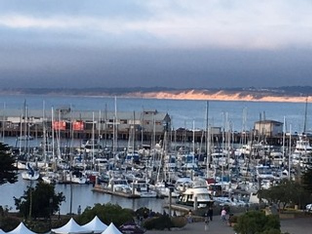 Monterey Harbor filled with rows and rows of boats